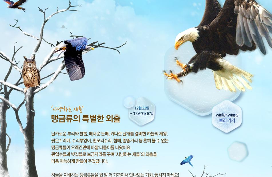 '사냥하는 새들' 맹금류의 특별한 외출 12월 22일 ~ '13년 3월10일 날카로운 부리와 발톱, 매서운 눈매, 커다란 날개를 겸비한 하늘의 제왕. 붉은꼬리매, 수리부엉이, 흰꼬리수리, 참매, 말똥가리 등 흔히 볼 수 없는  맹금류들이 오래간만에 바깥 나들이를 나왔어요. 관엽수들과 볏집들로 보금자리를 꾸며 '사냥하는 새들'의 외출을  더욱 아늑하게 만들어 주었답니다. 하늘을 지배하는 맹금류들을 한 발 더 가까이서 만나보는 기회, 놓치지 마세요!